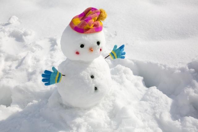 雪が降ったときの楽しみは?雪の日についてアンケートしました雪の日についてアンケートしました