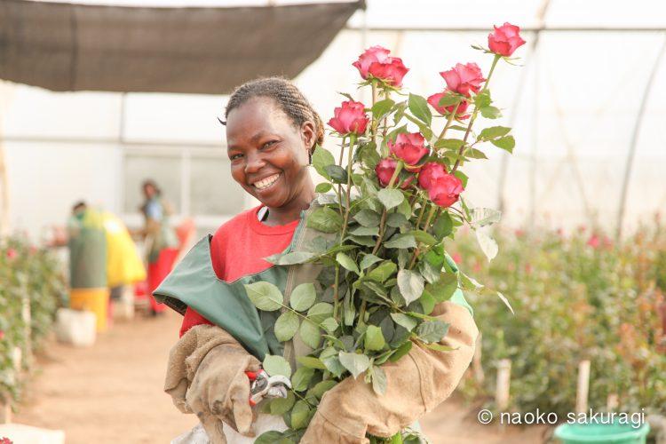 アフリカのバラ専門店「AFRIKA ROSE & FLOWERS」